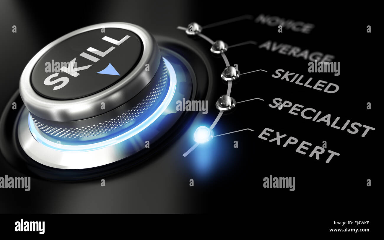 Modern switch with the word skill on the top with the words novice, average, skilled, specialist and expert around - Stock Image