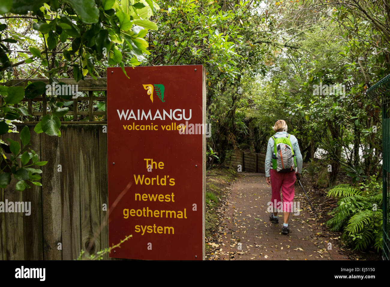 Waimangu geothermal area in New Zealand. - Stock Image