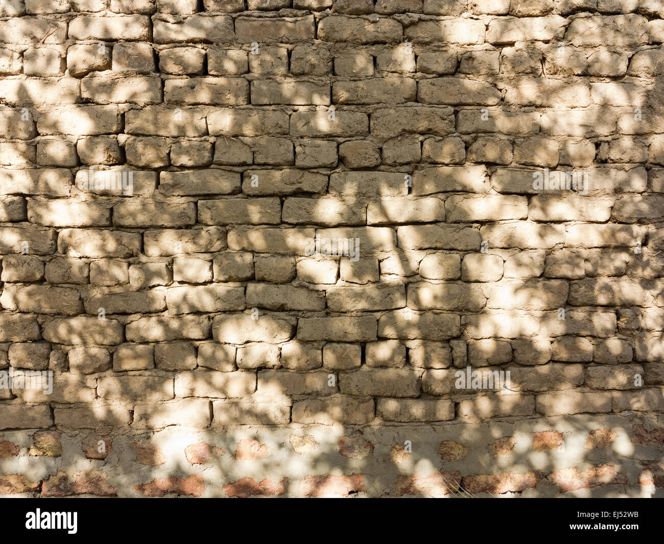 Detail close up of an area of mud brick wall in dappled light, Egypt Africa - Stock Image