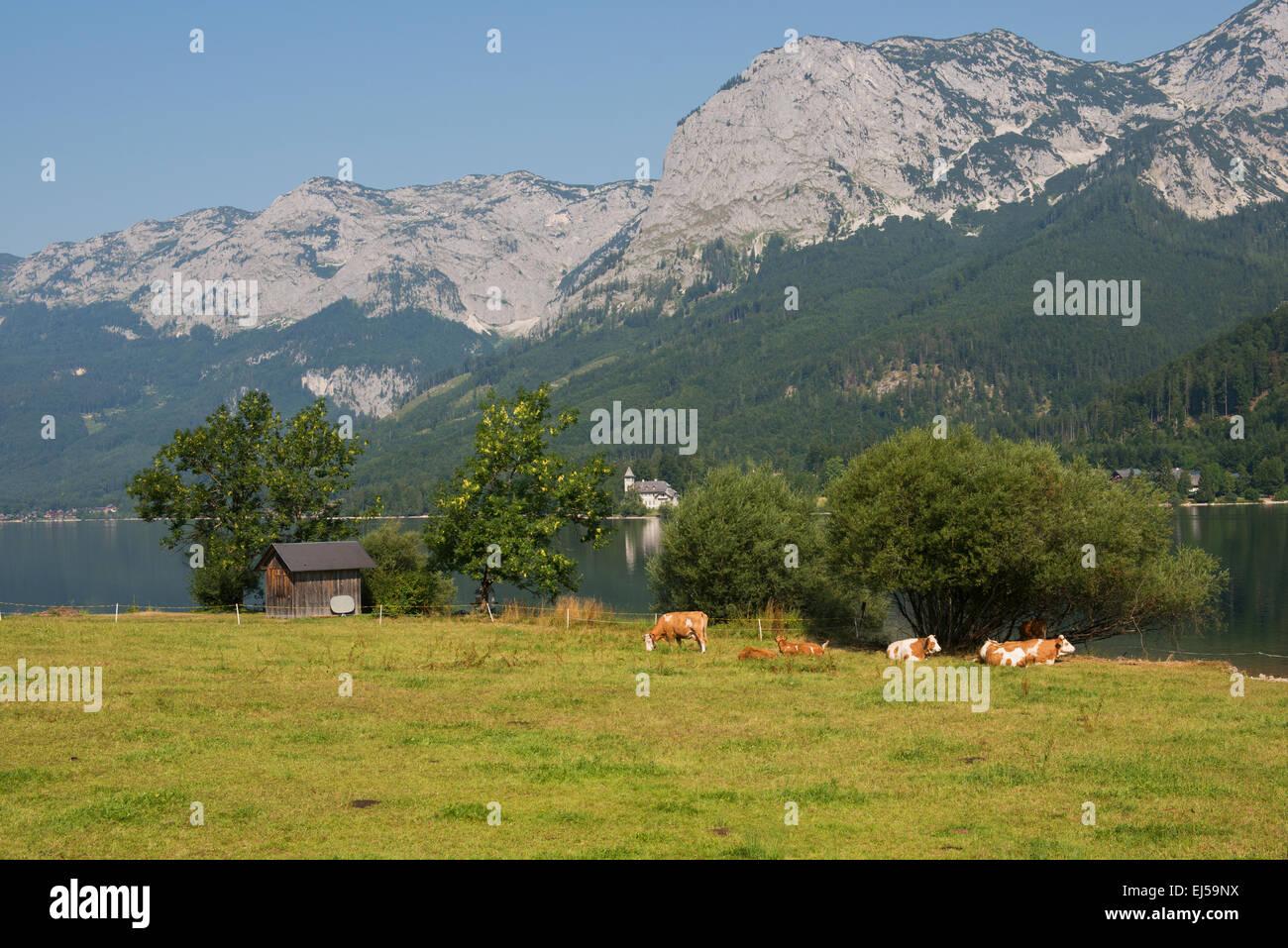 Blick von Wienern, Grundlsee zum Backenstein und Schloss Grundlsee - Stock Image