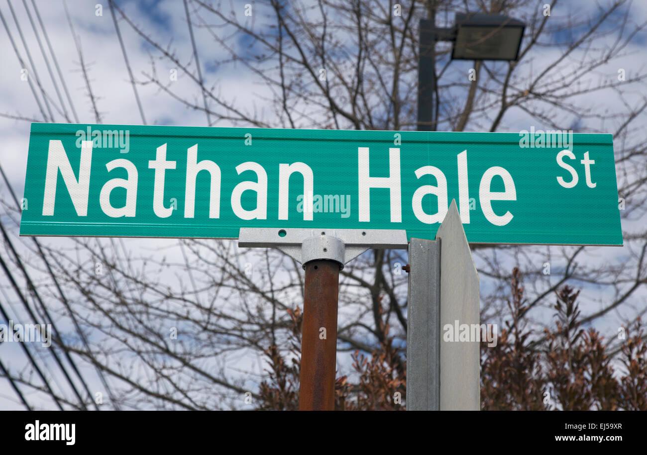 Nathan Hale Street sign - Stock Image