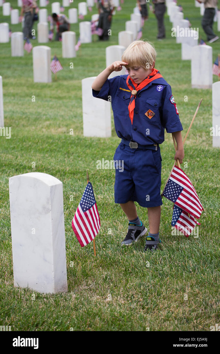 Cubscout salutes after placing one of 85, 000 US Flags at 2014 Memorial Day Event, Los Angeles National Cemetery, Stock Photo