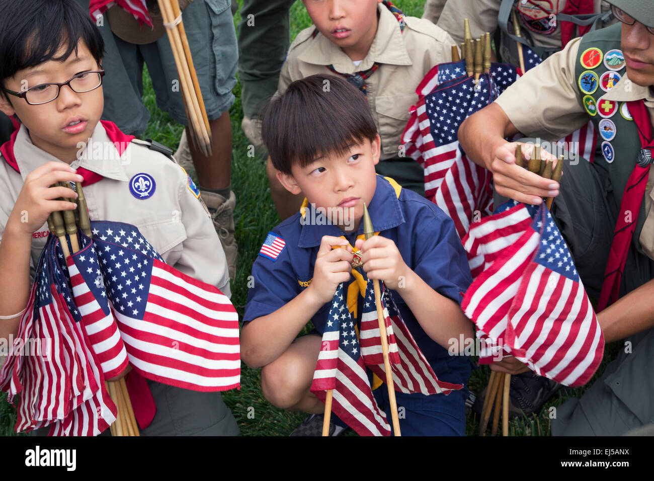 Boyscouts placing 85, 000 US Flags at Annual Memorial Day Event, Los Angeles National Cemetery, California, USA - Stock Image