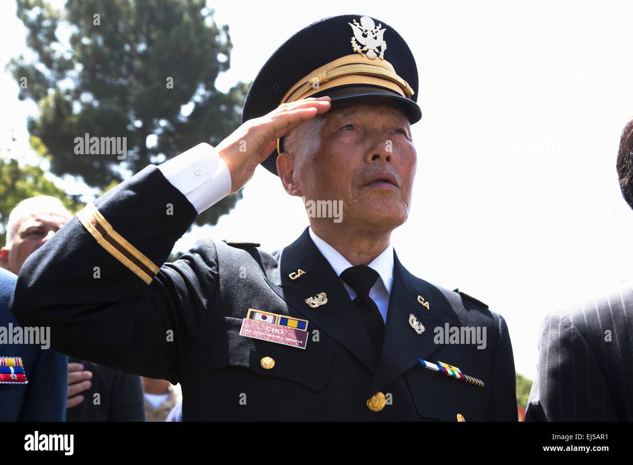 Veteran Salute Saluting Milita...