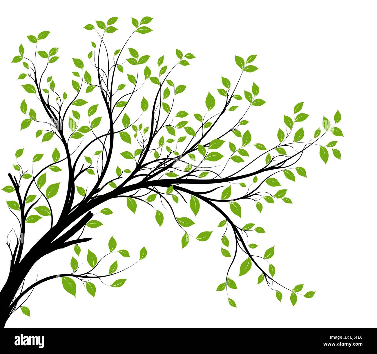 vector tree branch and green foliage vectorial silhouette stock rh alamy com free vector tree branch root tree vector branch