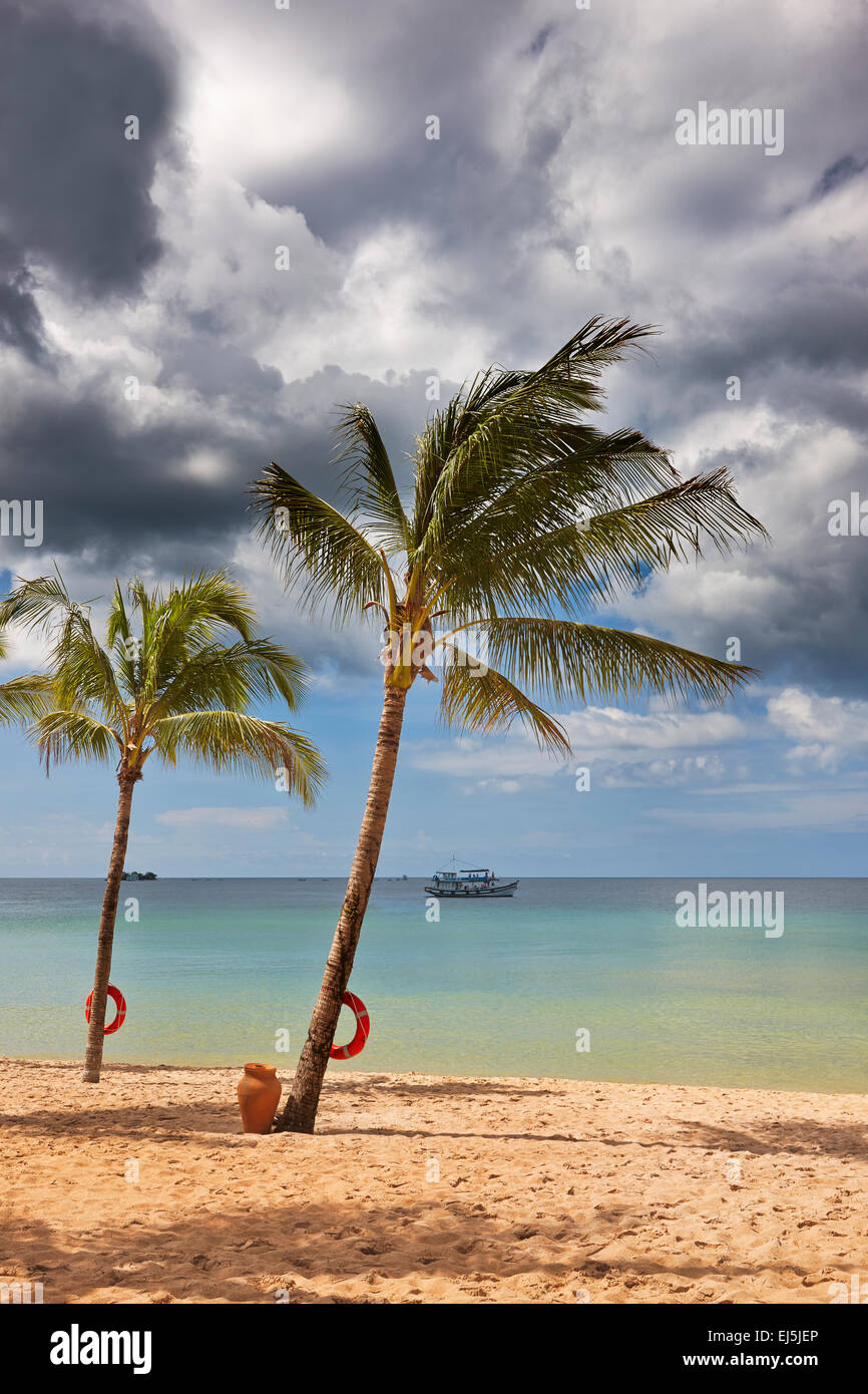 Palm trees growing on the beach at Vinpearl Resort, Phu Quoc island, Kien Giang Province, Vietnam. - Stock Image