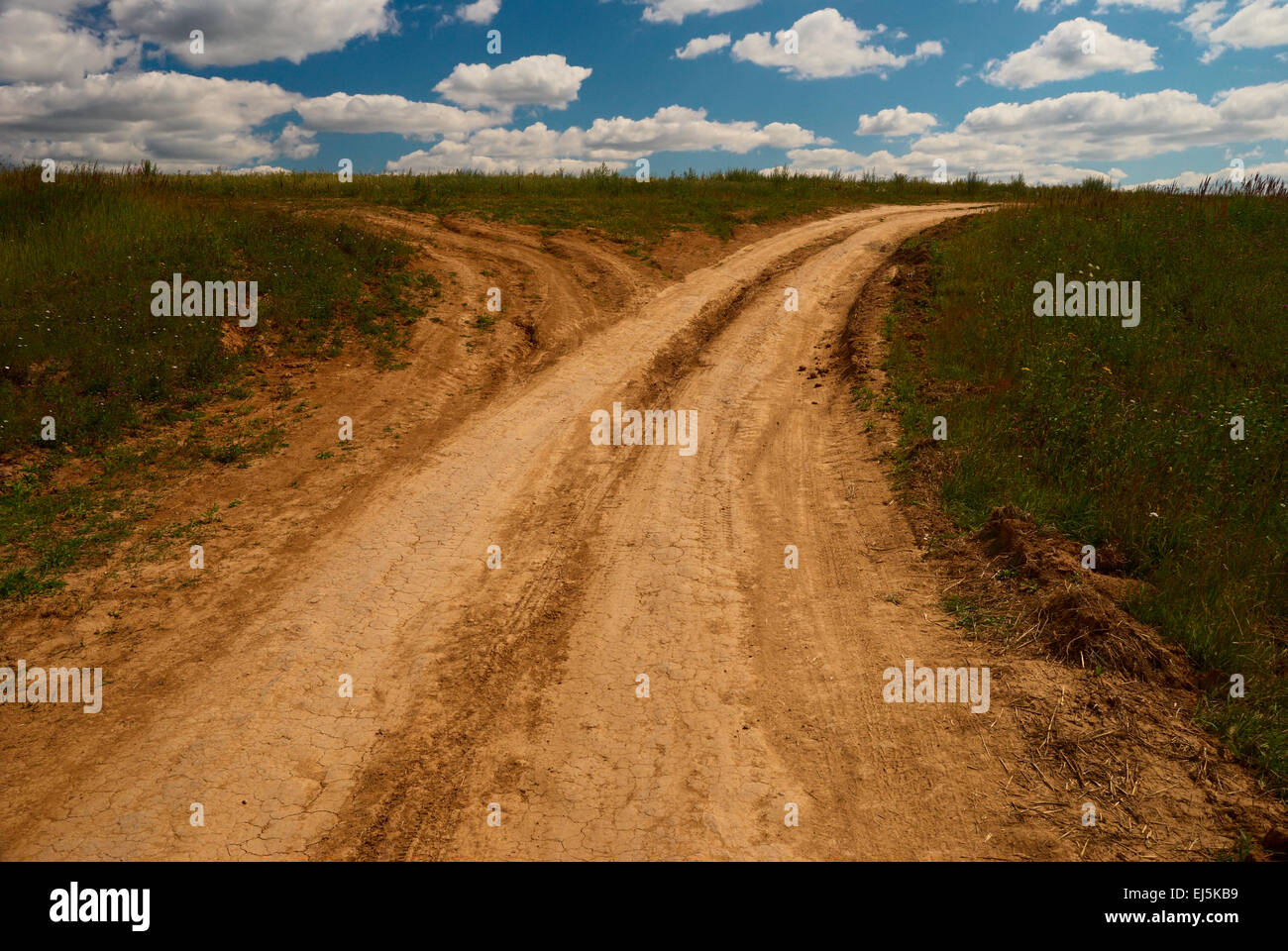 One country road divides into two roads - Stock Image