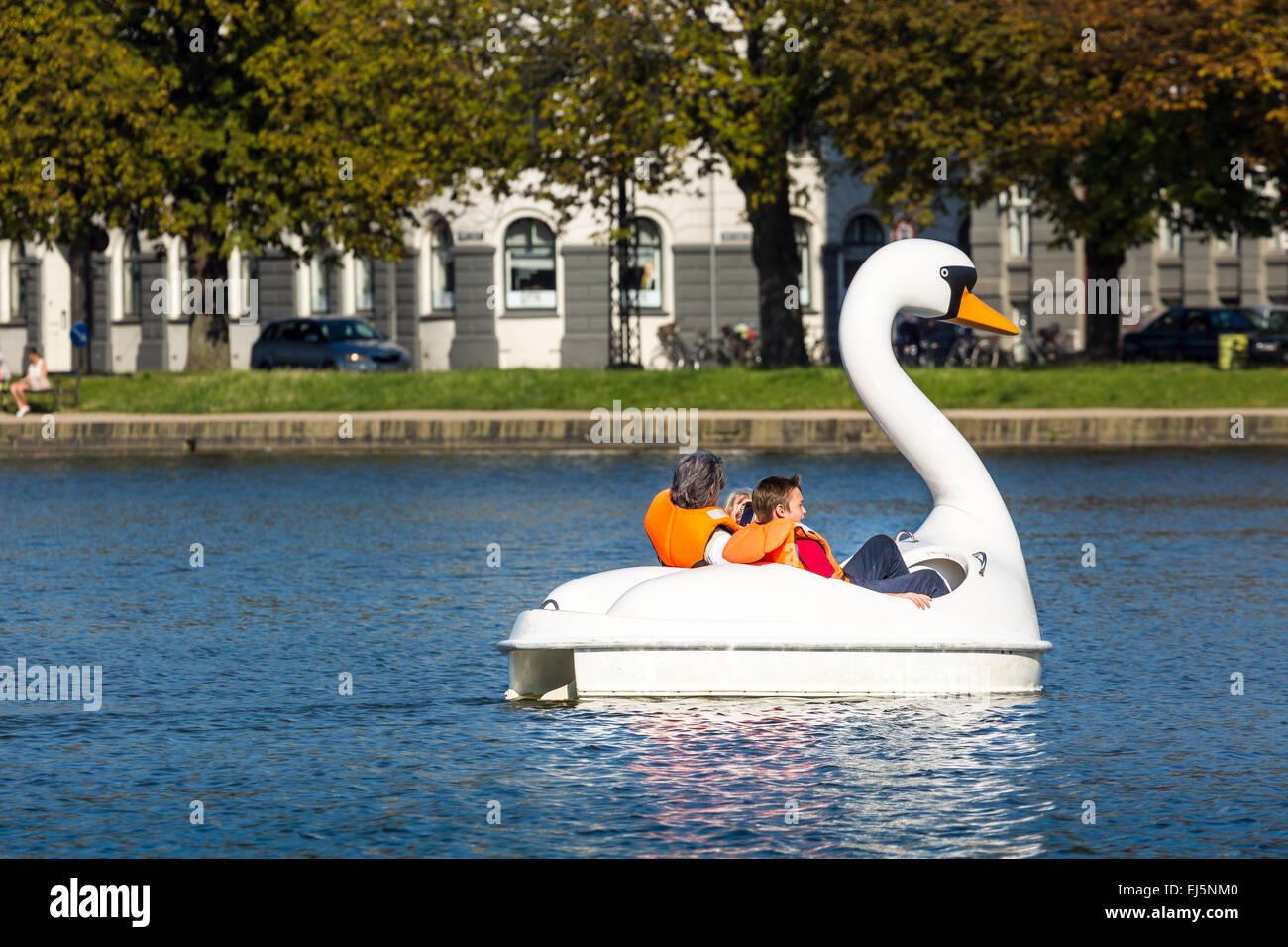 White swan in Sortedams Soe in Copenhagen, Denmark. - Stock Image
