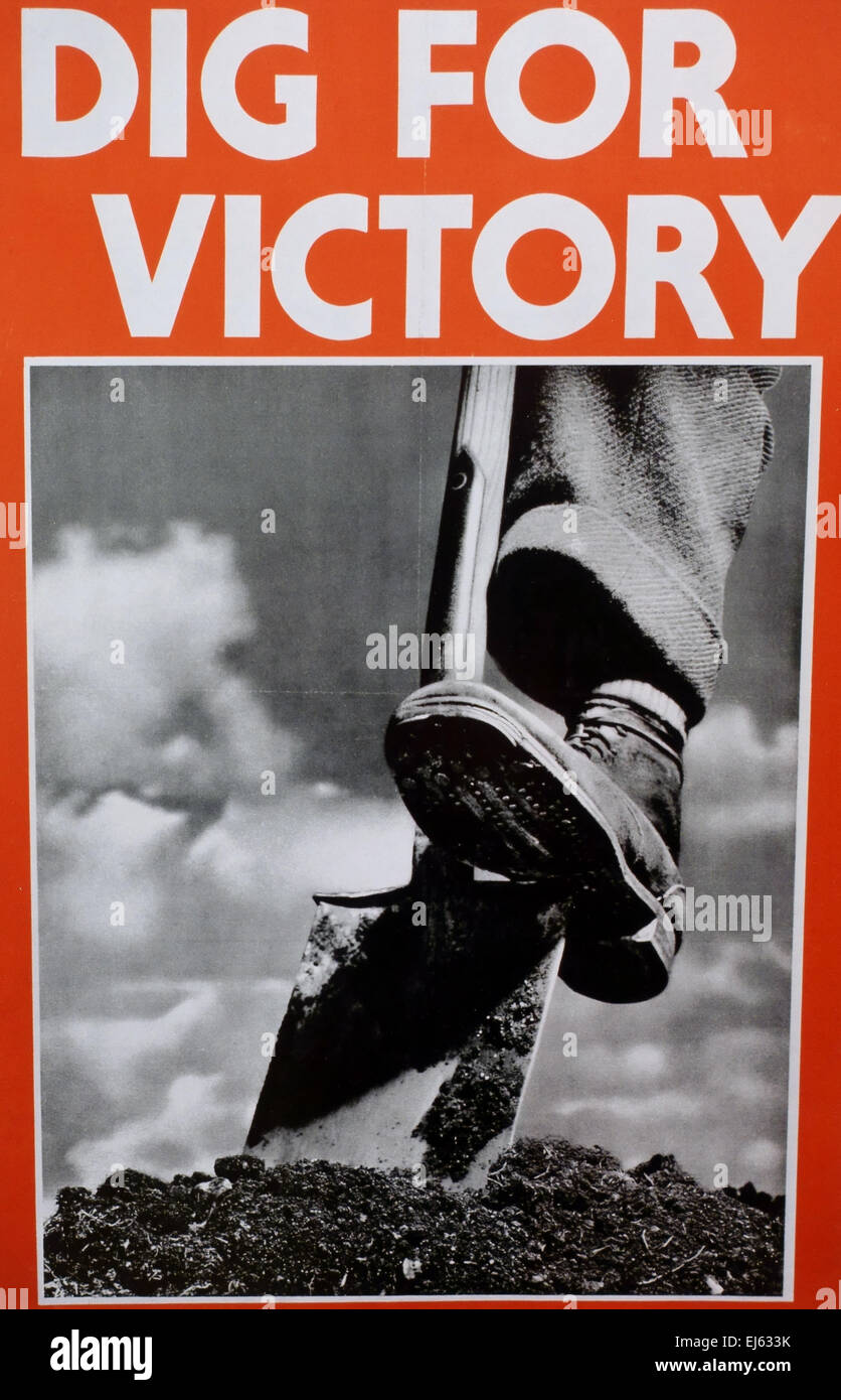 Classic 'Dig For Victory' poster from Second World War urged people to grow food, London - Stock Image