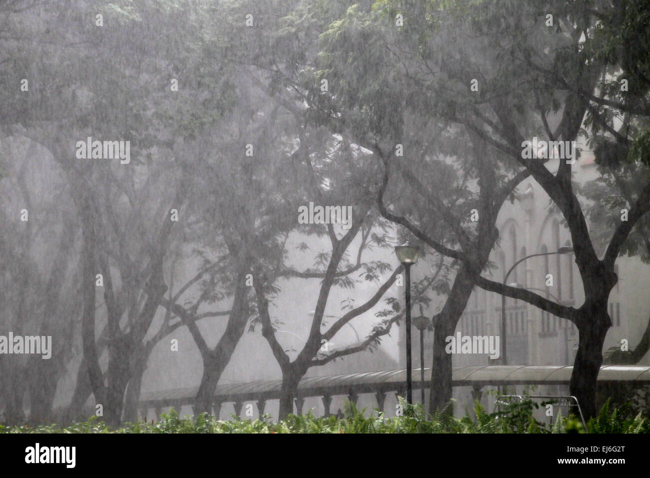 Monsoon rainstorm in Singapore - Stock Image