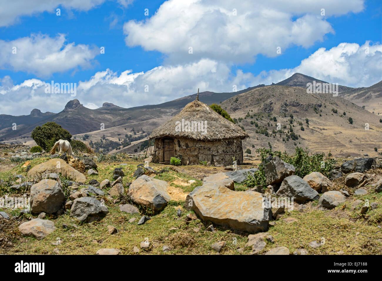 Round Oromo hut with thatched roof in a mountainous landscape of the Ethiopian highland, Bale area, Oromiya, Ethiopia - Stock Image