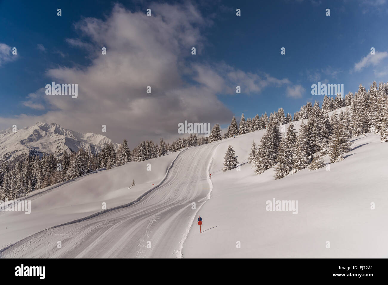 Ski piste, winter forest, Venet, Zams, Verwall group at the back, Tyrol, Austria - Stock Image