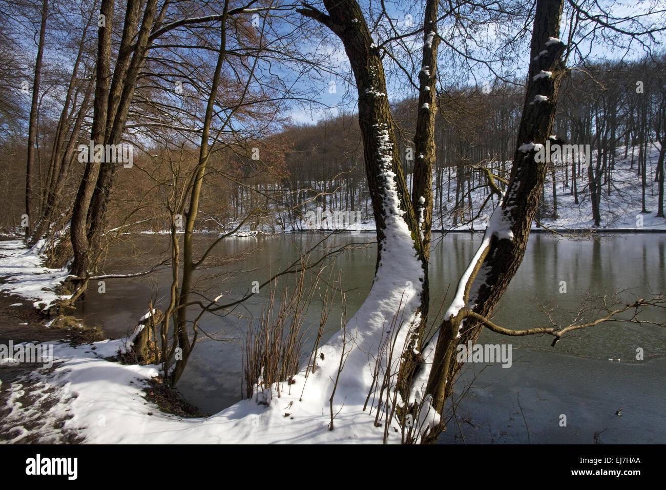 Landscape Hammerteich, Witten, Germany - Stock Image