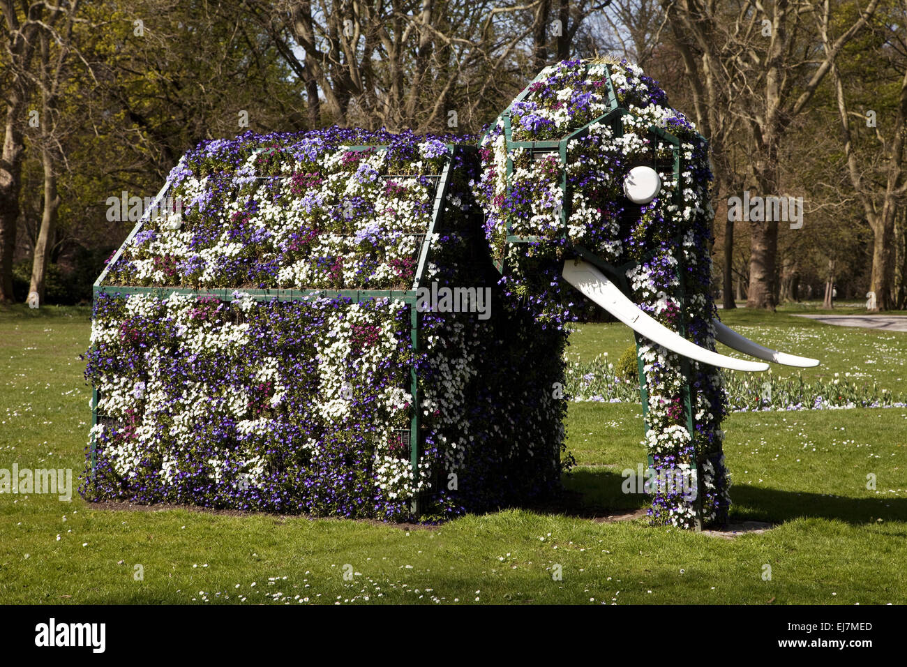 Elephant made ​​of flowers, Hamm, Germany - Stock Image