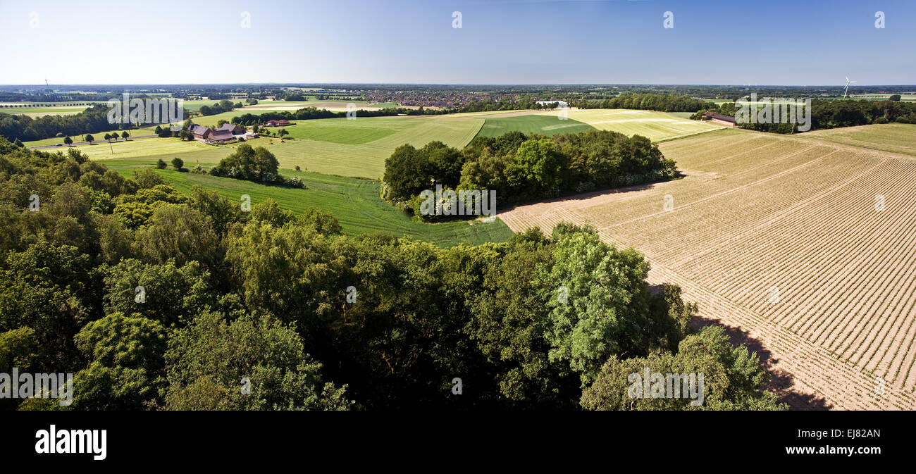 Landscape Sonsbecker Switzerland, Germany - Stock Image