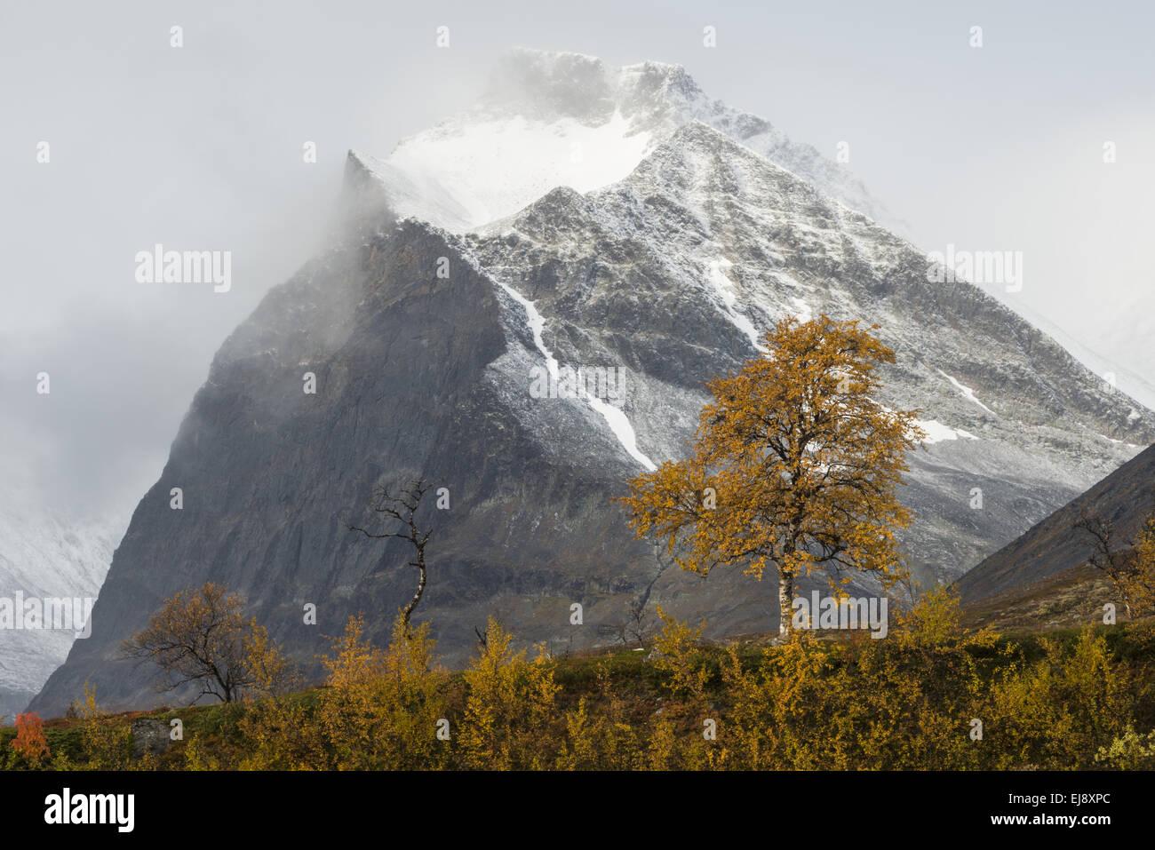 Mt. Duolbagorni, Kebnekaise mountains, Sweden - Stock Image