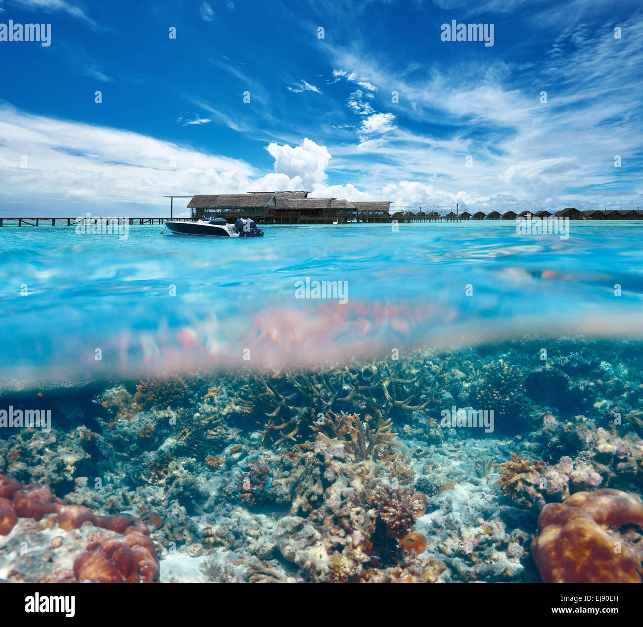 Split View Sea Bottom Stock Photos & Split View Sea Bottom