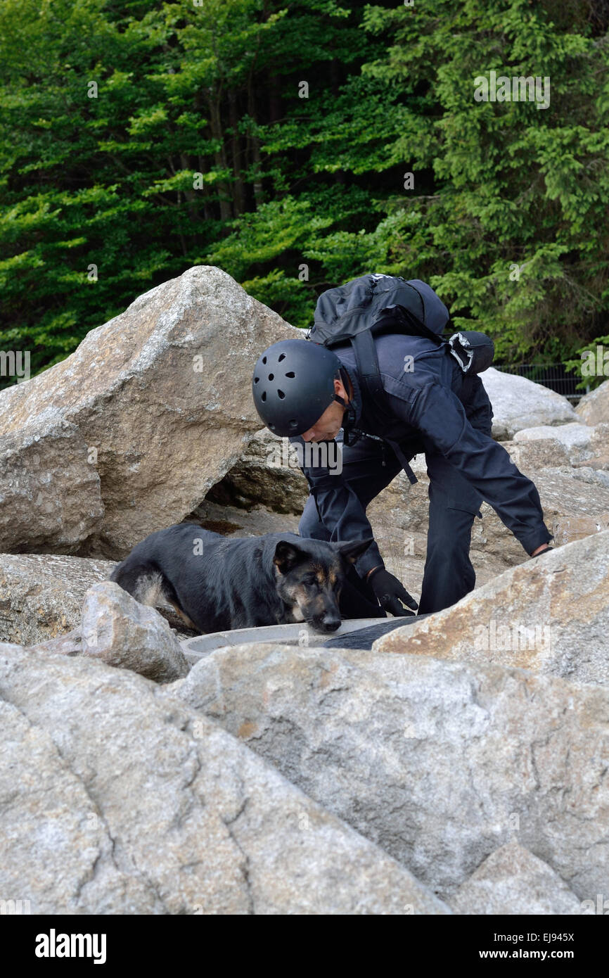 Man with search dog in use - Stock Image