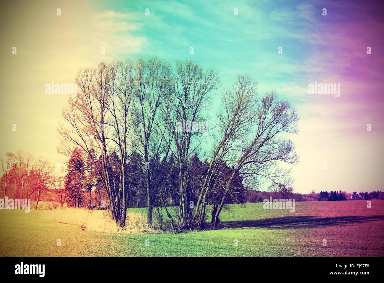 Old film stylized rural landscape. - Stock Image