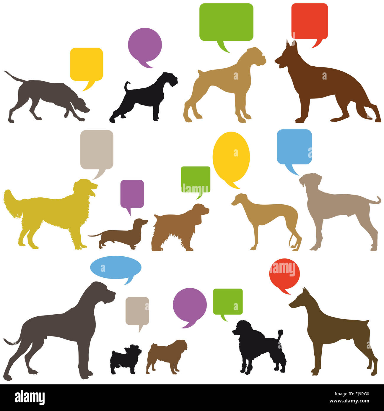 Dog Sign Language - Stock Image
