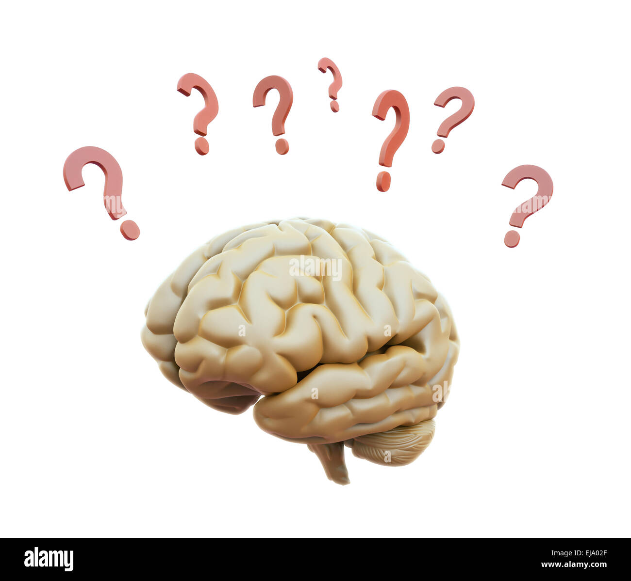 Human brain surrounded with question marks - Stock Image
