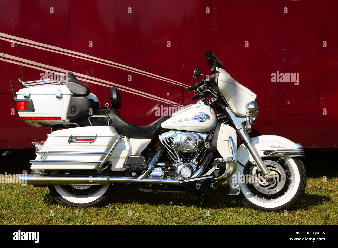 Harley Davidson motorcycle - Stock Image