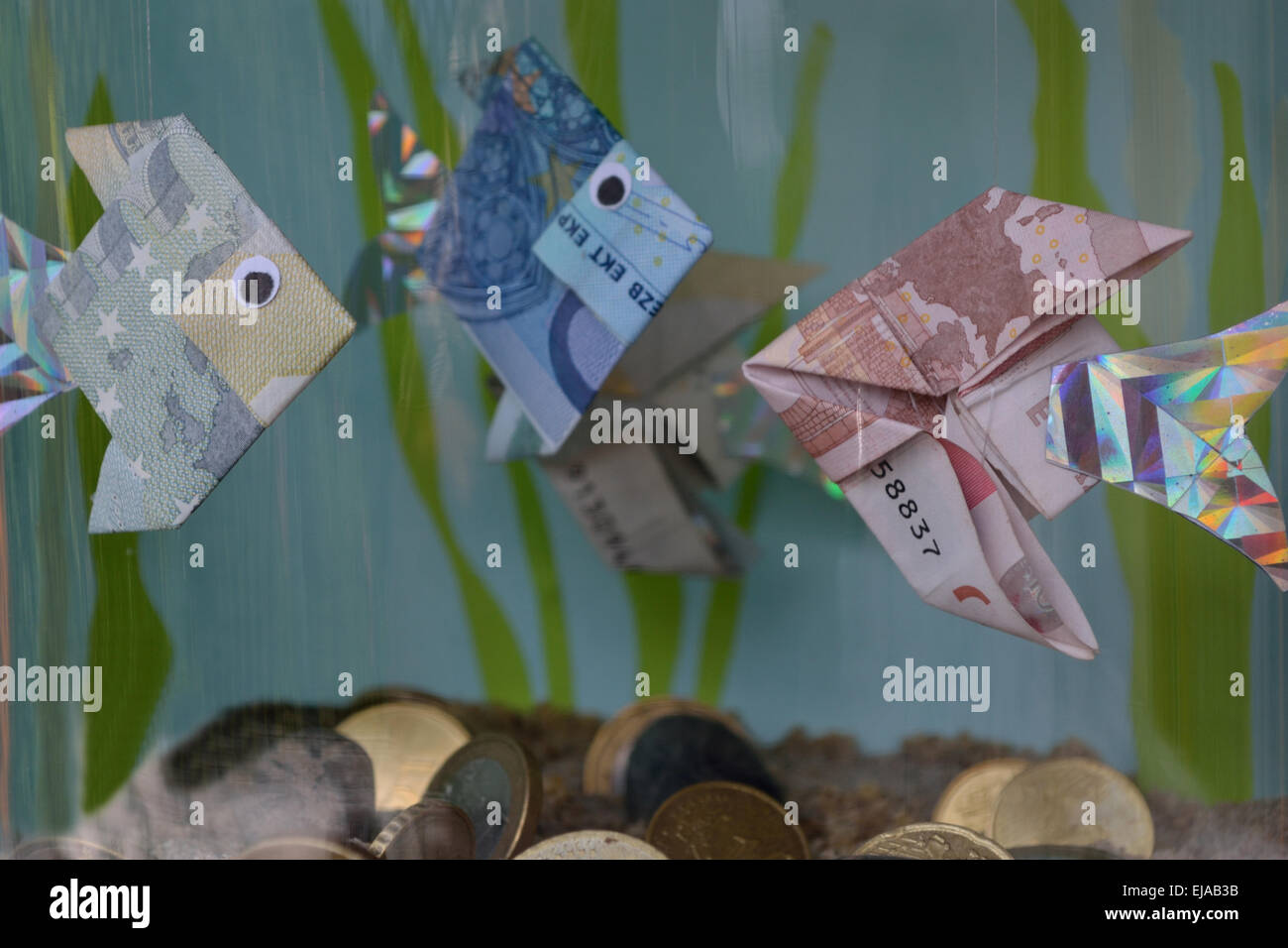 Aquarium With Fish Money And Coins Stock Photo 80133519 Alamy