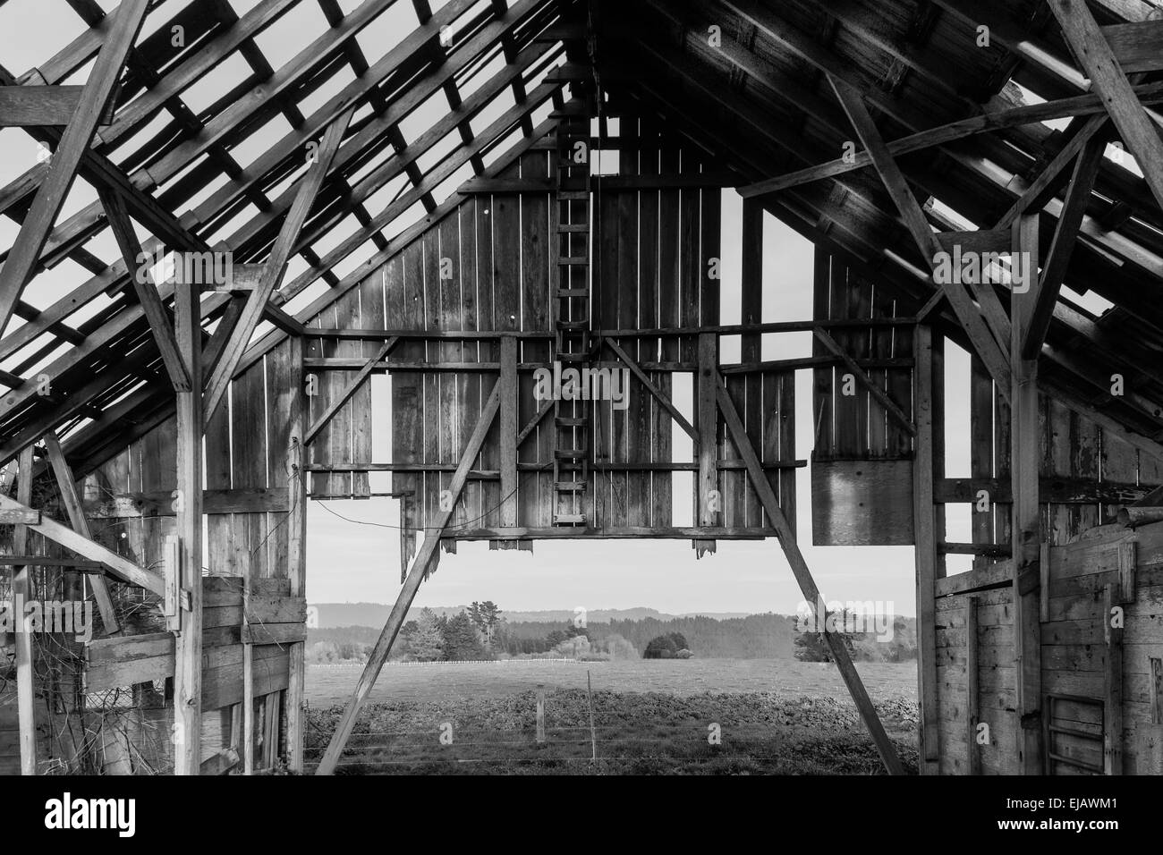 Old Barn Black And White Interior