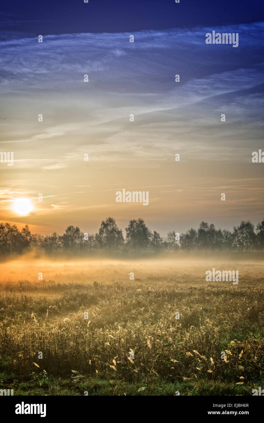 sunrise over the Vehnemoor Stock Photo