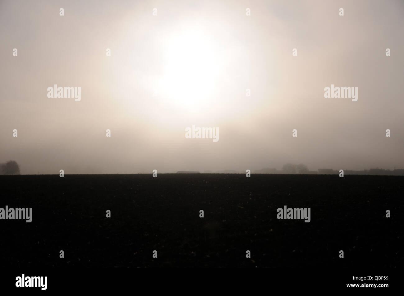 Fog in sunrise Stock Photo