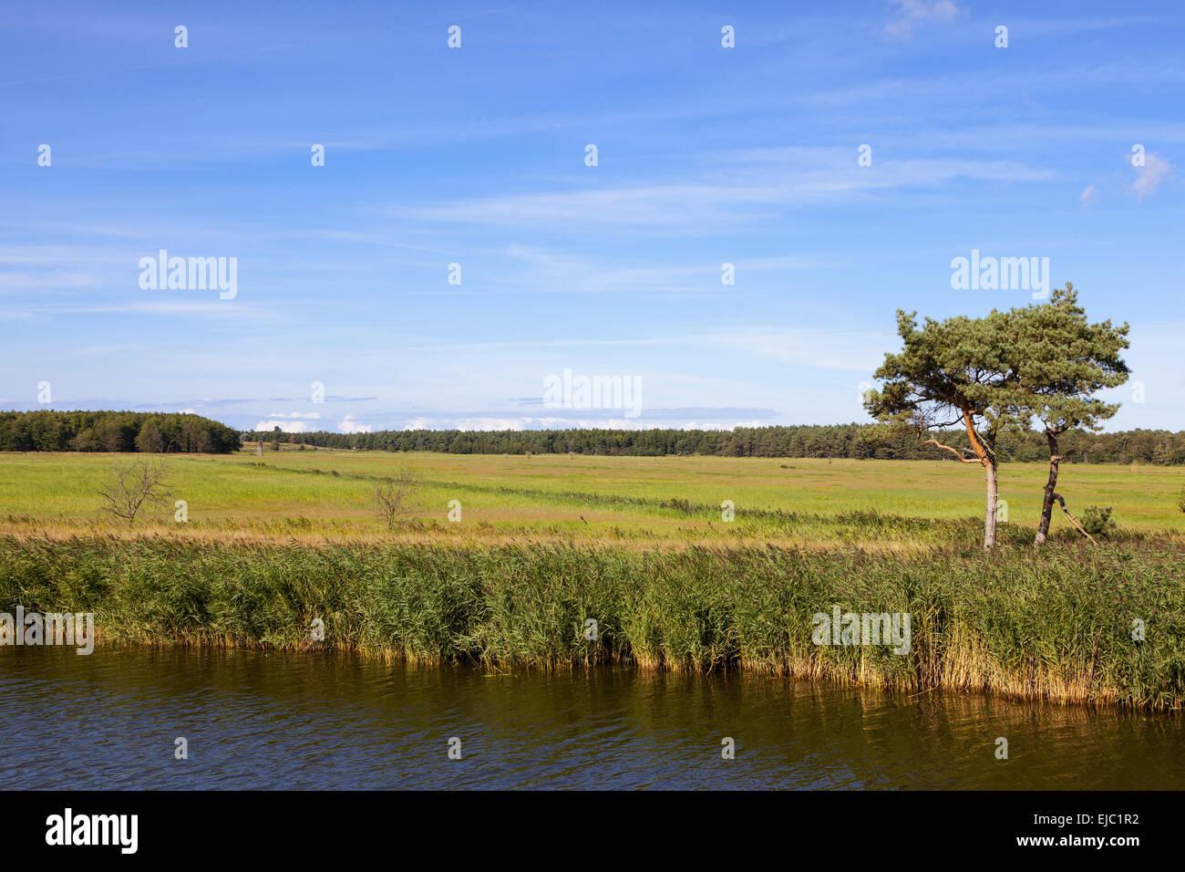 Boddenlandscape - Stock Image
