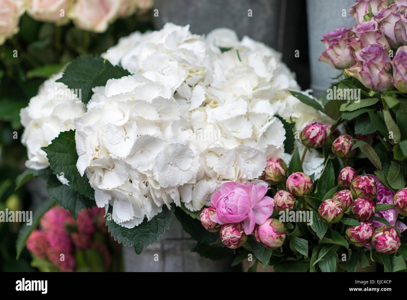 Flower Buckets Stock Photos Flower Buckets Stock Images Alamy