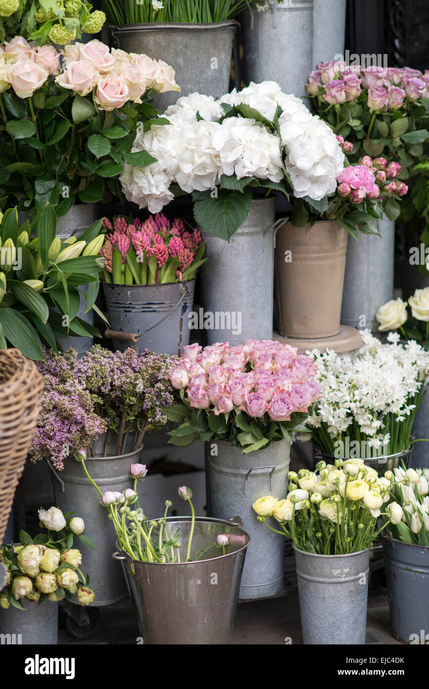 Spring Flowers Including Lilacs Hydrangea Hyacinth Paperwhites