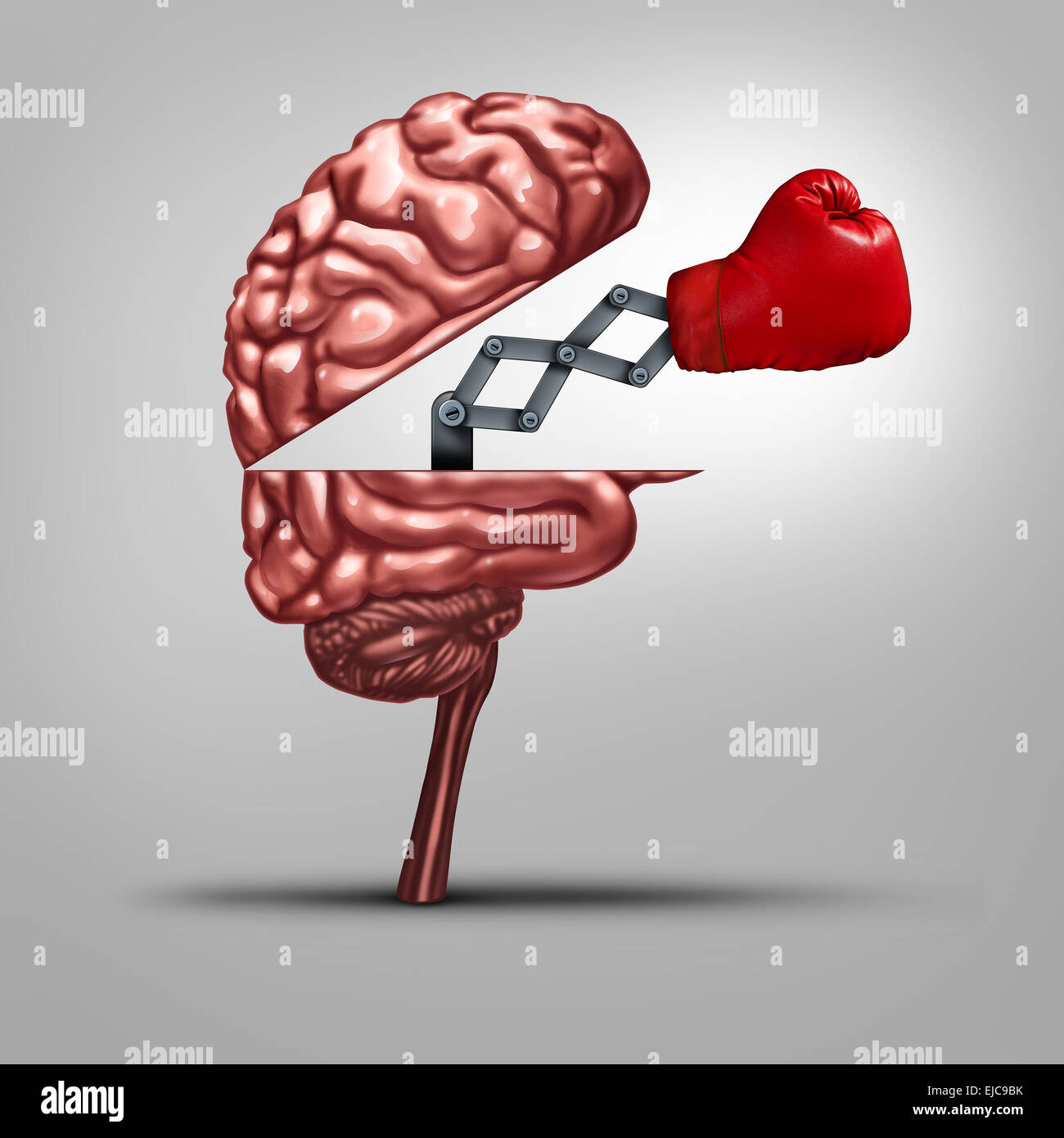 Strong memory and brain strength symbol as a human thinking organ opened to reveal a boxing glove as a concept for - Stock Image