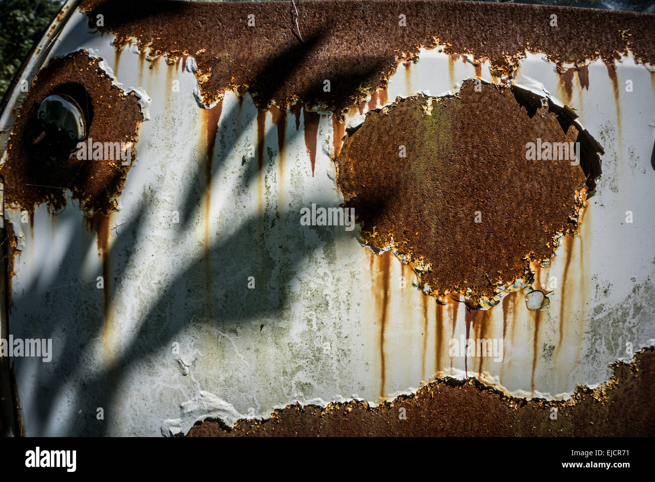 Close-up of the rusty door of an abandoned white car - Stock Image