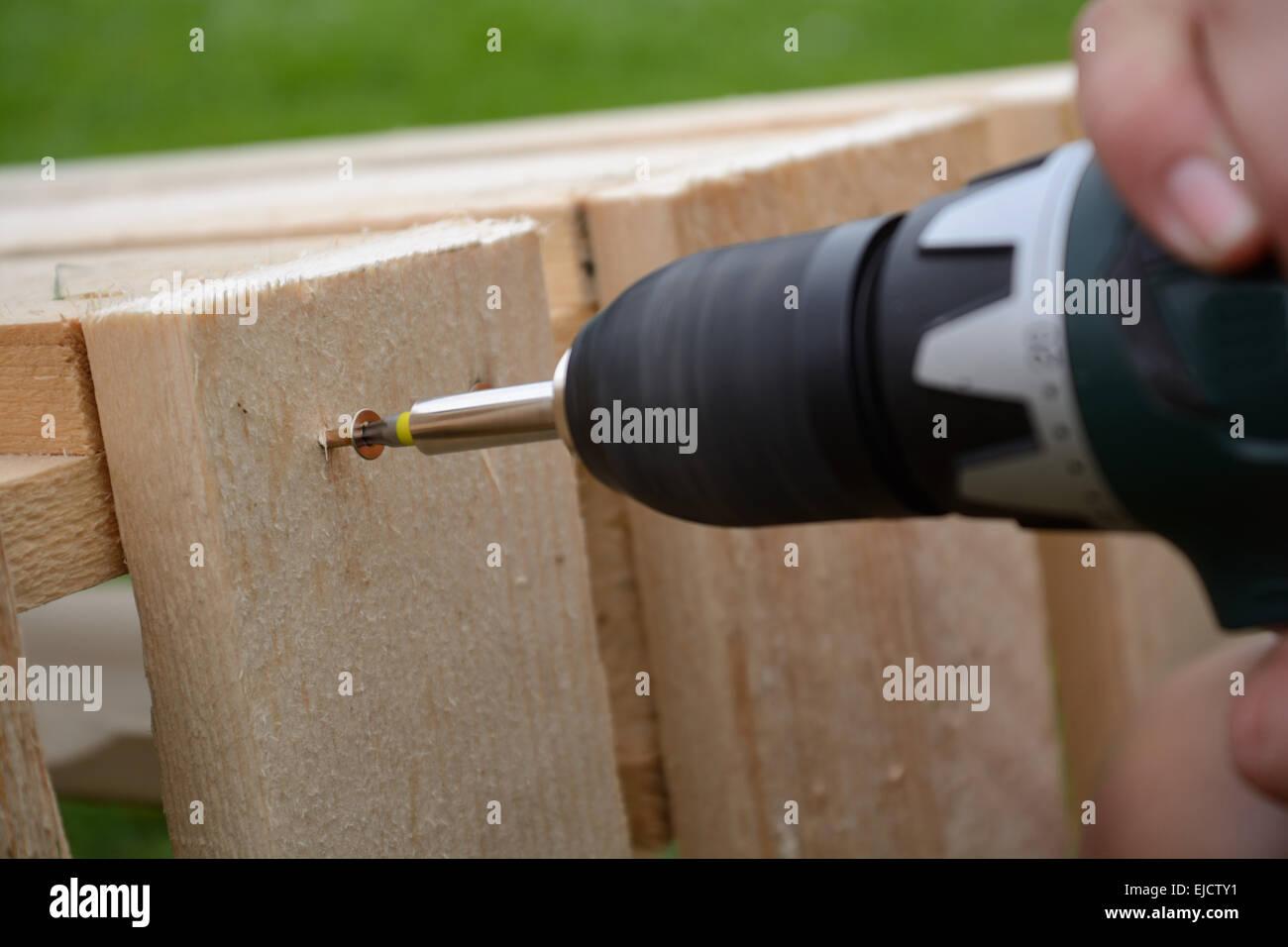 Carpenter screwed a Torx in wood - Stock Image