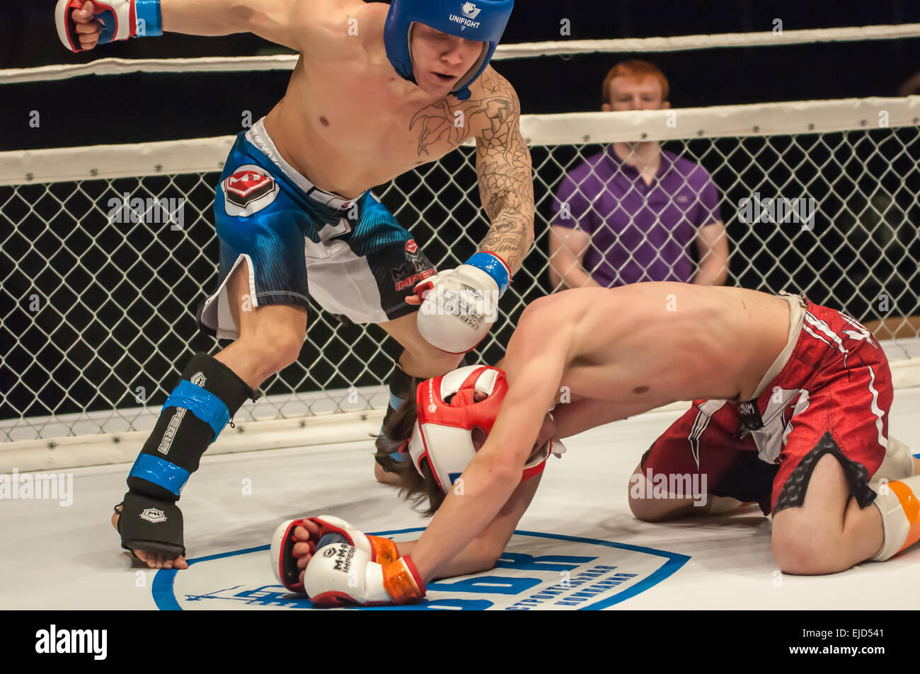ORENBURG, ORENBURG region, RUSSIA - 21 February 2015: Match two MMA fighters on the open cup of Orenburg region Stock Photo