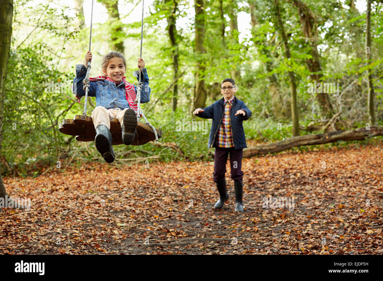 Beech woods in Autumn. A girl sitting on a swing being pushed by her brother. - Stock Image
