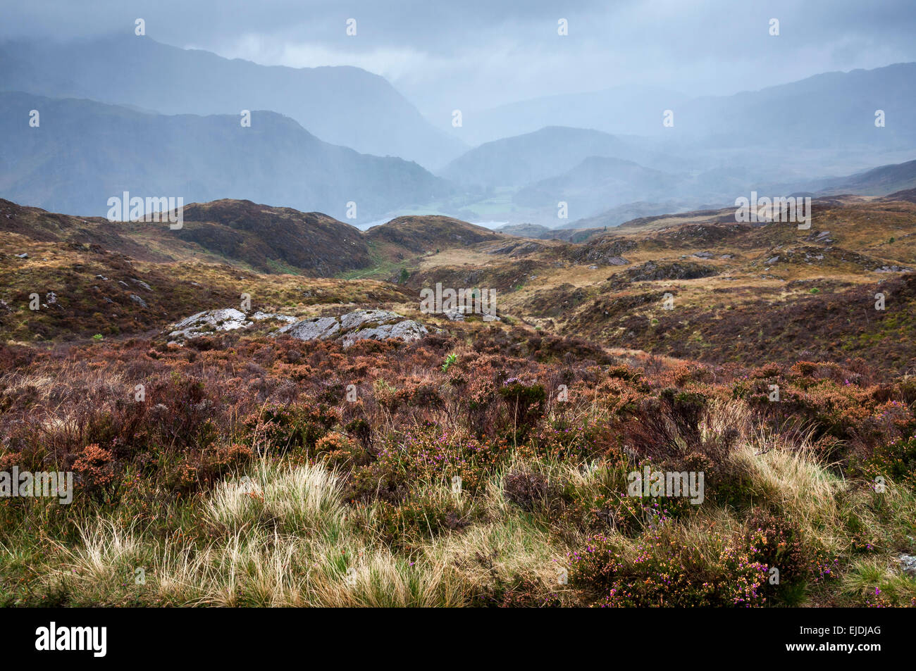Dramatic rainy weather in Snowdonia. Rain falling on hills and mountains near Beddgelert. Stock Photo