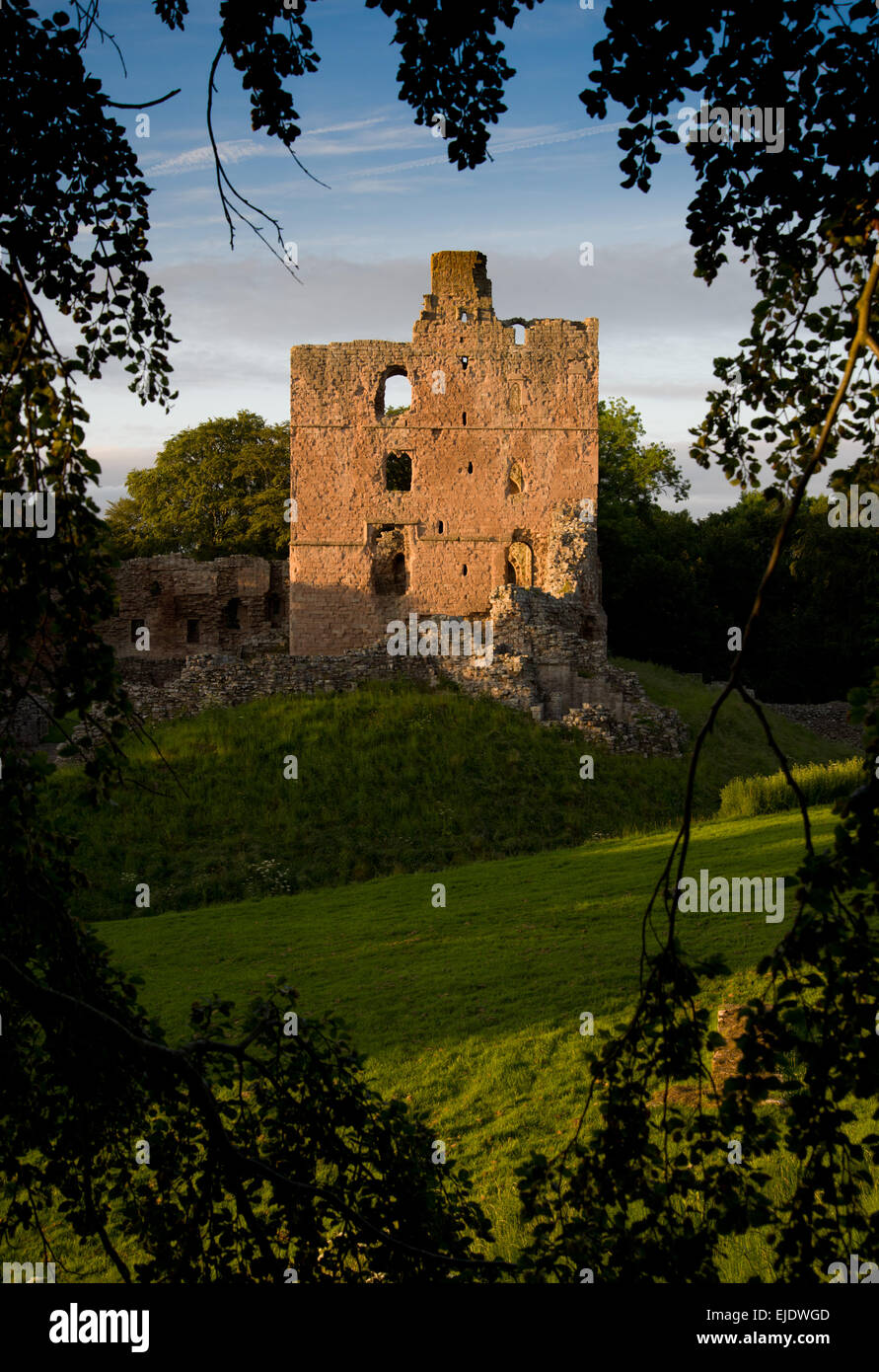 Norham Castle one of the most important of the Border castles was built in 1121 by the Bishops of Durham a long - Stock Image