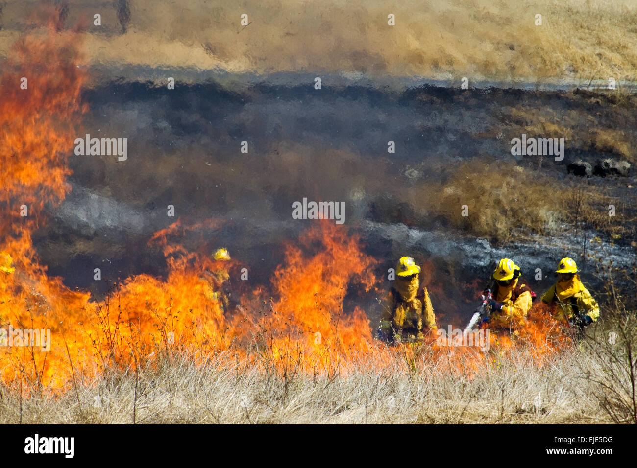 Firefighter Fighting Fire - Stock Image