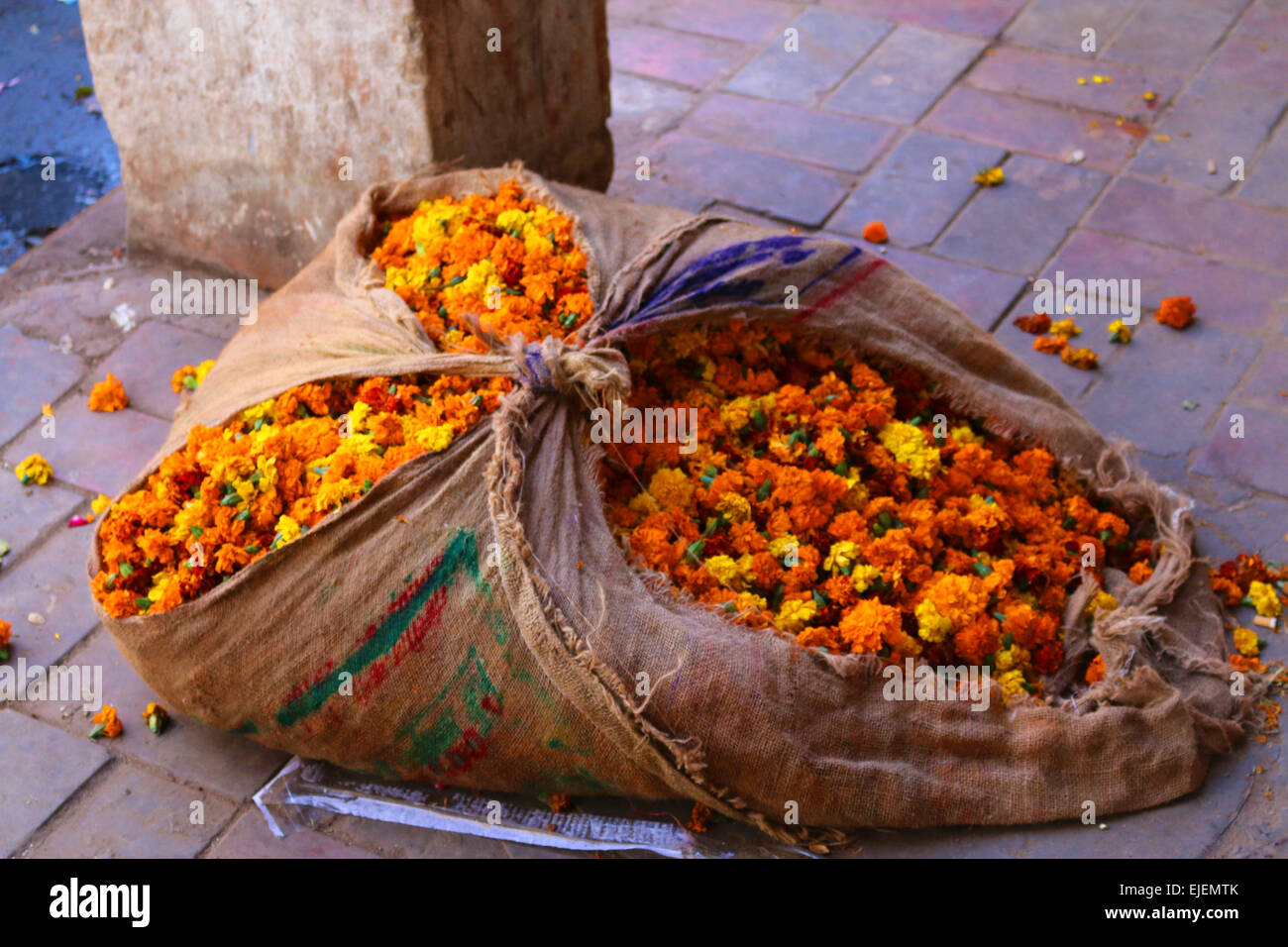 A sackful of flowers in Delhi - Stock Image