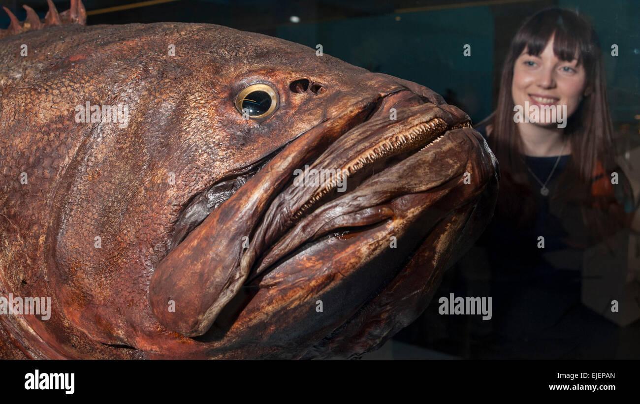 grouper datování uk pečlivé randění