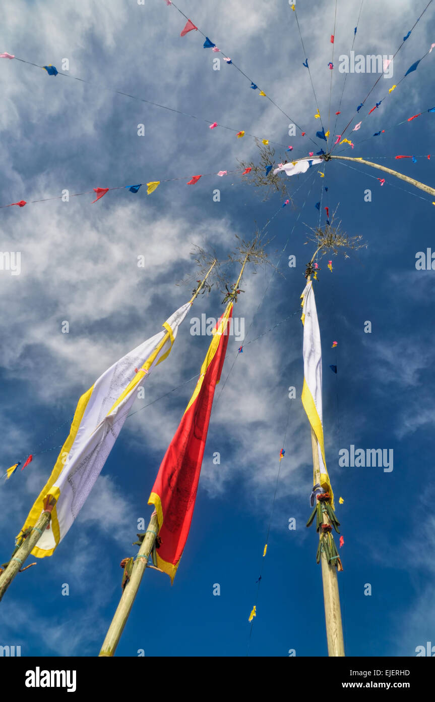 Colorful buddhist prayer flags and standards on poles in Pathivara Devi, Nepal - Stock Image