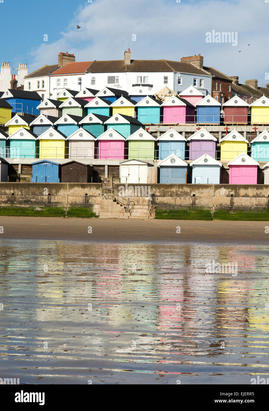 a colorful selection of beach huts that have been set up close to Walton on the Naze are reflected in the wet sandy - Stock Image