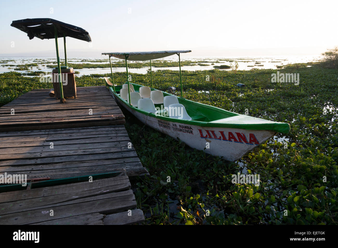 Lake Naivasha. Rift valley. Kenya. Stock Photo