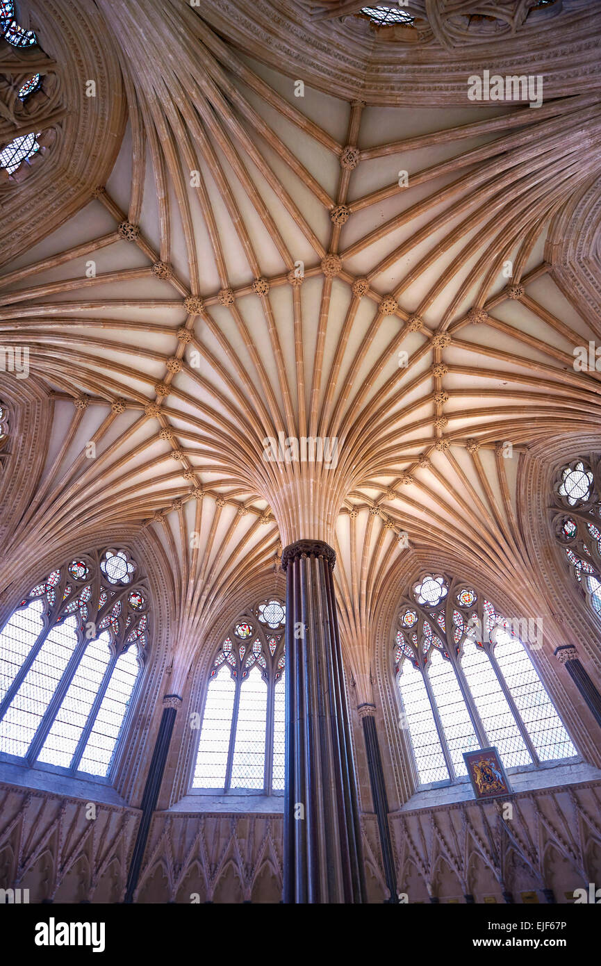 The vaulted ceiling of the Chapter House of  the medieval Wells Cathedral built in the Early English Gothic style - Stock Image