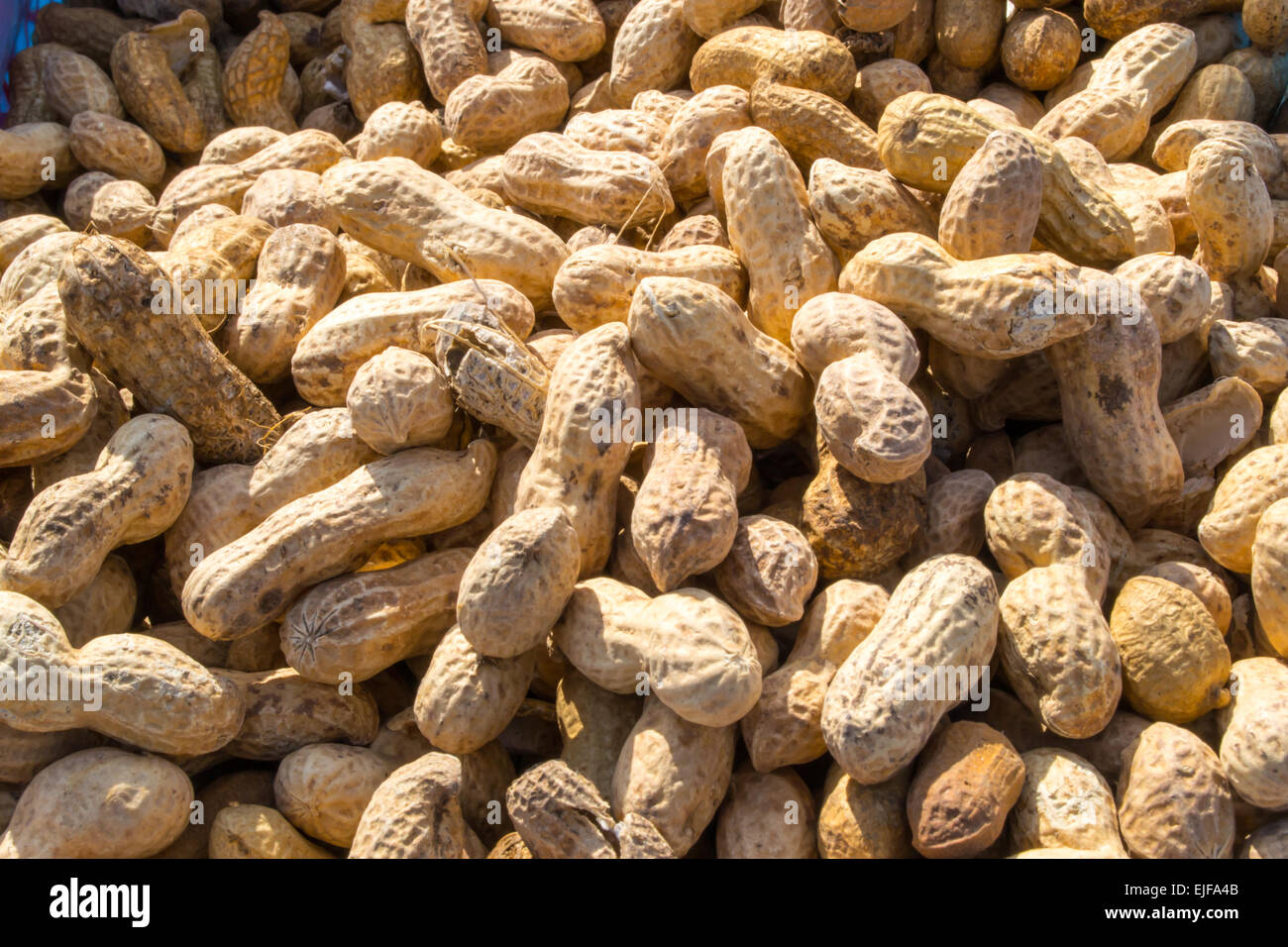 Monkey nuts for sale - crack the fragile brittle shells to get to the peanut - Stock Image