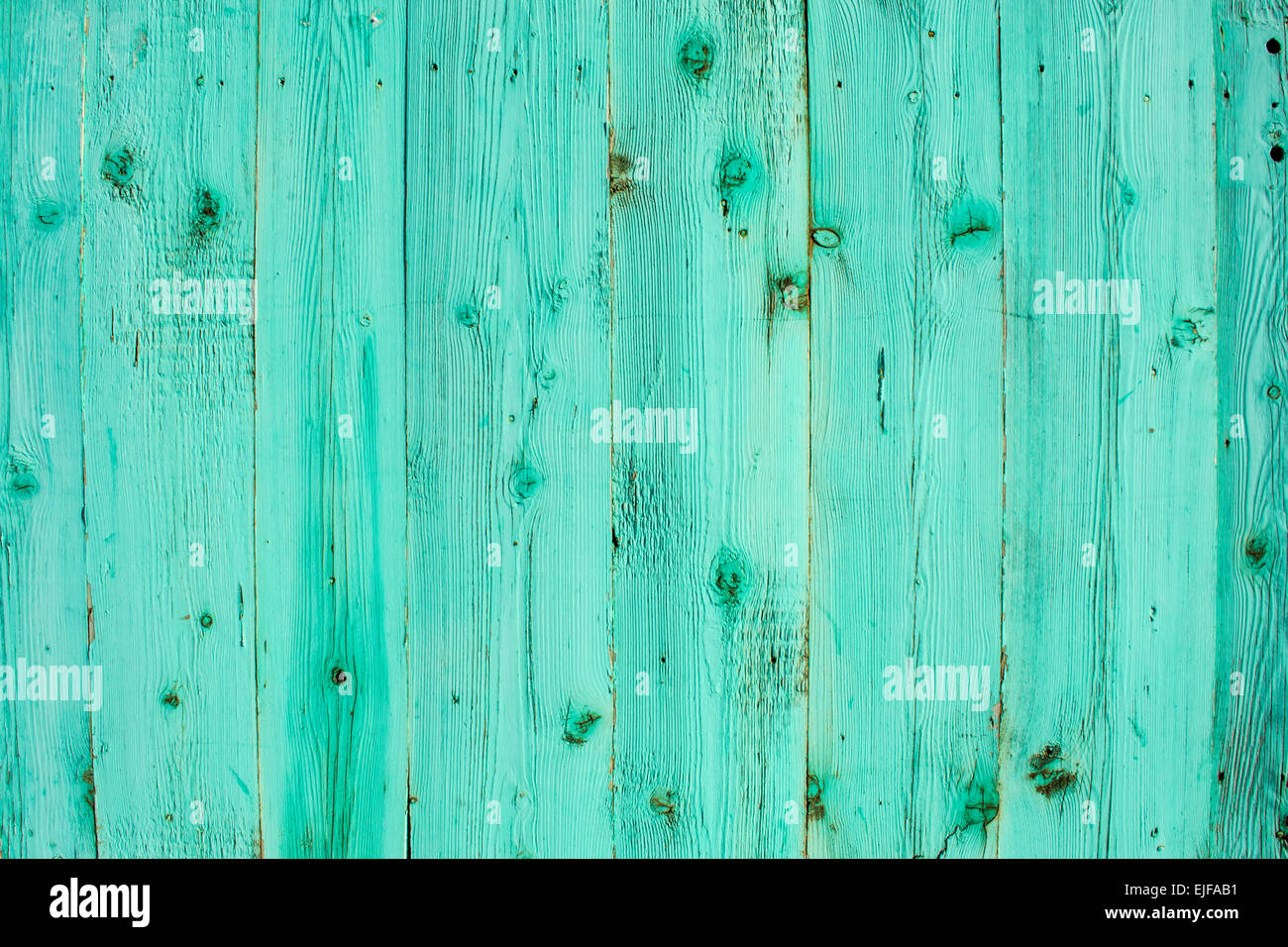 Blue stained wooden planks with knots - Stock Image