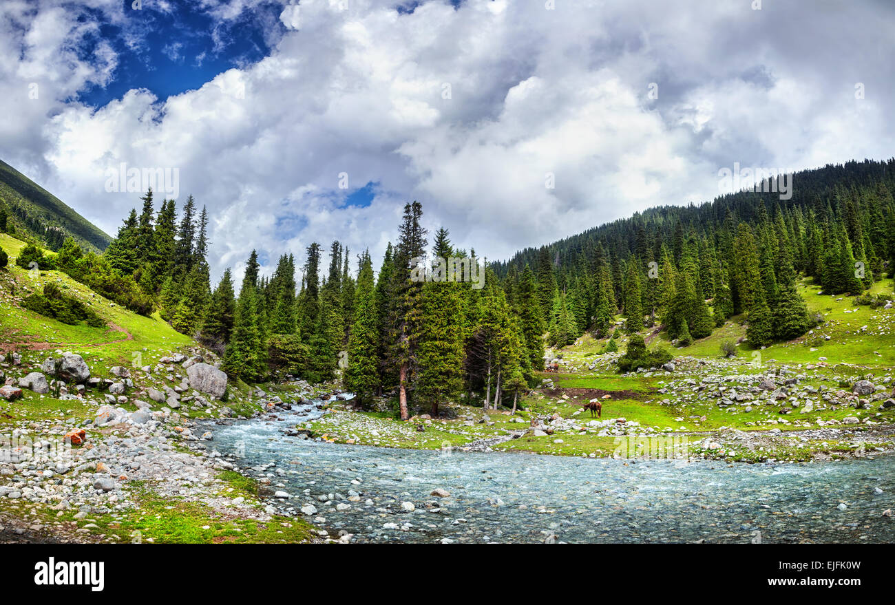 Mountain river near Saint lake in Kyrgyzstan, Central Asia - Stock Image
